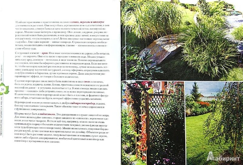 Иллюстрация 1 из 17 для Красивый сад: хитрости и ноу-хау - Ольга Воронова | Лабиринт - книги. Источник: Лабиринт