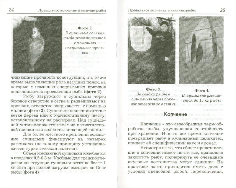 Иллюстрация 1 из 6 для Правильное копчение и вяление рыбы - Пышков, Смирнов | Лабиринт - книги. Источник: Лабиринт