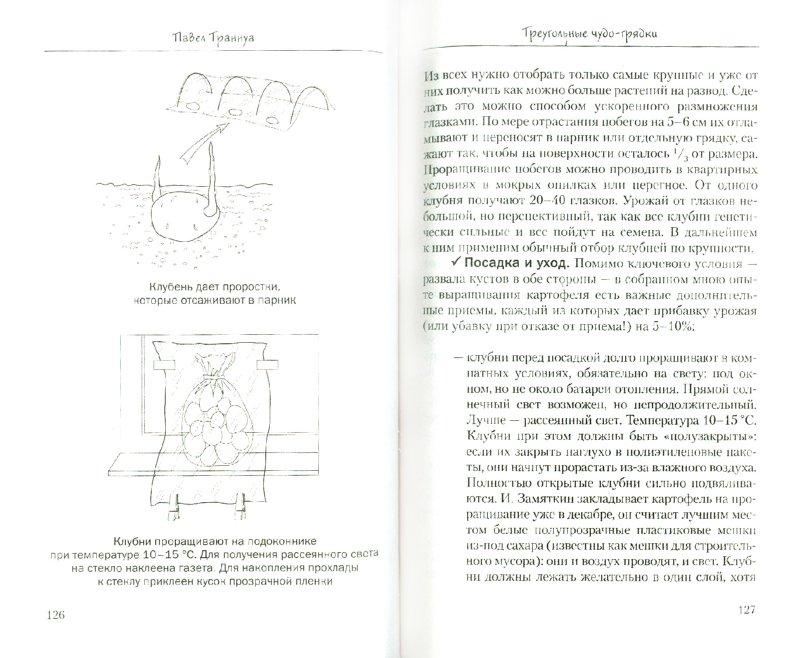 Иллюстрация 1 из 13 для Треугольные чудо-грядки - Павел Траннуа | Лабиринт - книги. Источник: Лабиринт