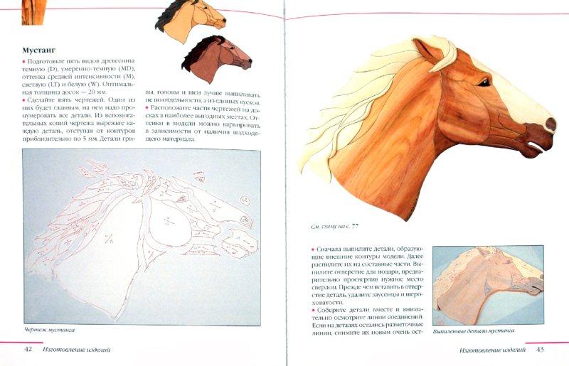 Иллюстрация 1 из 8 для Интарсия - Робертс, Буэр | Лабиринт - книги. Источник: Лабиринт