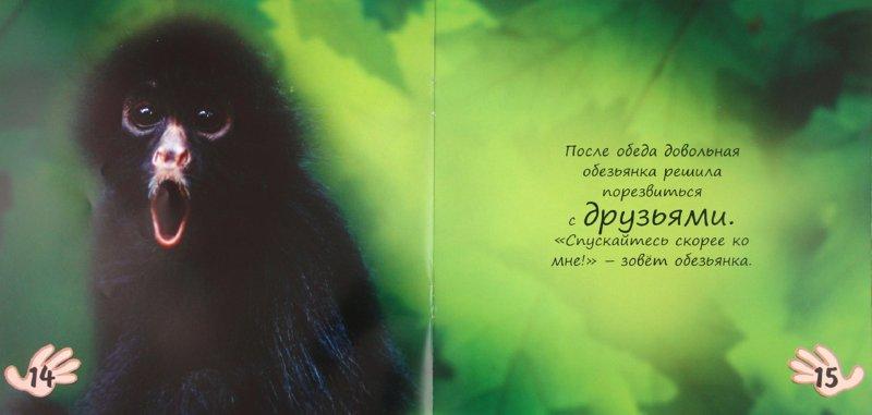 Иллюстрация 1 из 15 для Обезьянка изучает джунгли - Майкл Тейтелбаум | Лабиринт - книги. Источник: Лабиринт