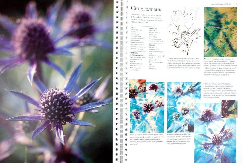 Иллюстрация 1 из 12 для Как рисовать цветы акварелью - Робин Берри | Лабиринт - книги. Источник: Лабиринт