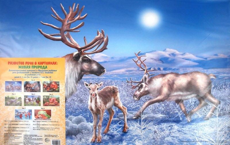 """Иллюстрация 1 из 9 для Развитие речи в картинках """"Живая природа""""   Лабиринт - книги. Источник: Лабиринт"""