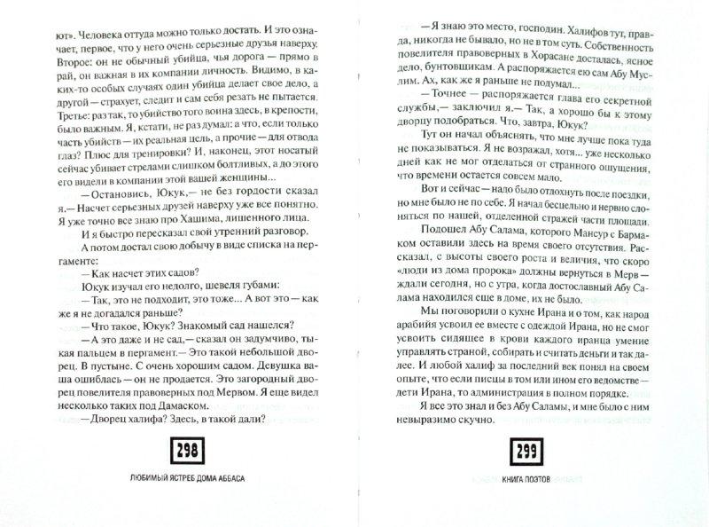 Иллюстрация 1 из 9 для Любимый ястреб дома Аббаса - Чэнь Мастер | Лабиринт - книги. Источник: Лабиринт