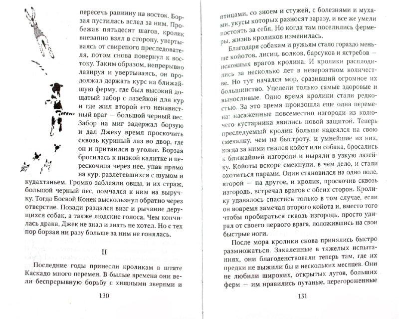 Иллюстрация 1 из 8 для Джек - Боевой конек - Эрнест Сетон-Томпсон | Лабиринт - книги. Источник: Лабиринт