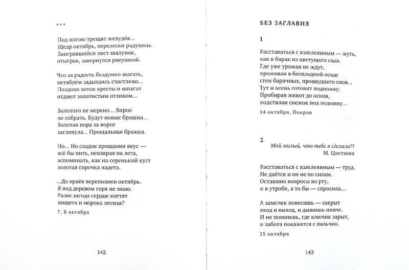 Иллюстрация 1 из 5 для Дневник. Продолжение - Наталья Загвоздина | Лабиринт - книги. Источник: Лабиринт