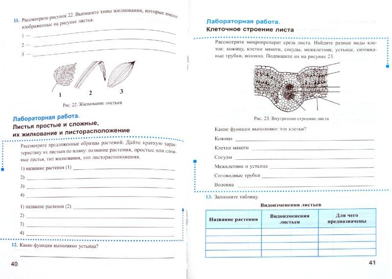 Скачать тетрадь по биологии 6 класс пасечник
