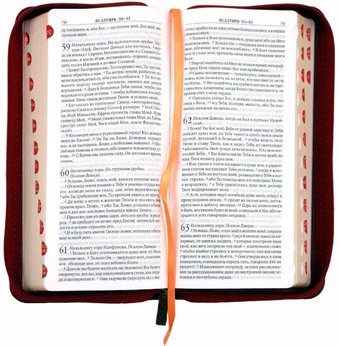Иллюстрация 1 из 18 для Библия бордовая кожаная на молнии (1259) (каноническая) (047YZTI) | Лабиринт - книги. Источник: Лабиринт