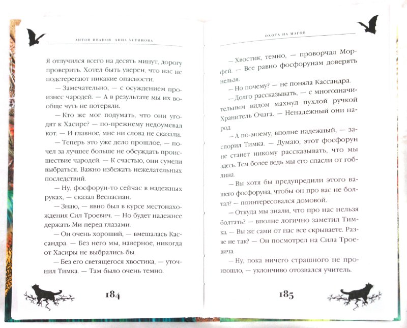 Иллюстрация 1 из 5 для Охота на магов - Иванов, Устинова | Лабиринт - книги. Источник: Лабиринт