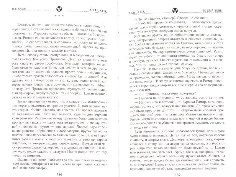 Иллюстрация 1 из 22 для Во имя Зоны - Лев Жаков | Лабиринт - книги. Источник: Лабиринт