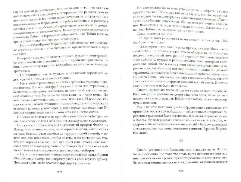 Иллюстрация 1 из 5 для Катарина, Павлин и иезуит - Янчар Драго | Лабиринт - книги. Источник: Лабиринт