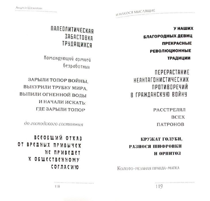 Иллюстрация 1 из 5 для Многоукольный зигзаг - Андрей Шемарин | Лабиринт - книги. Источник: Лабиринт