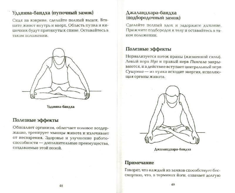 Иллюстрация 1 из 9 для Хатха-Йога для начинающих - Равиндра Кумар   Лабиринт - книги. Источник: Лабиринт