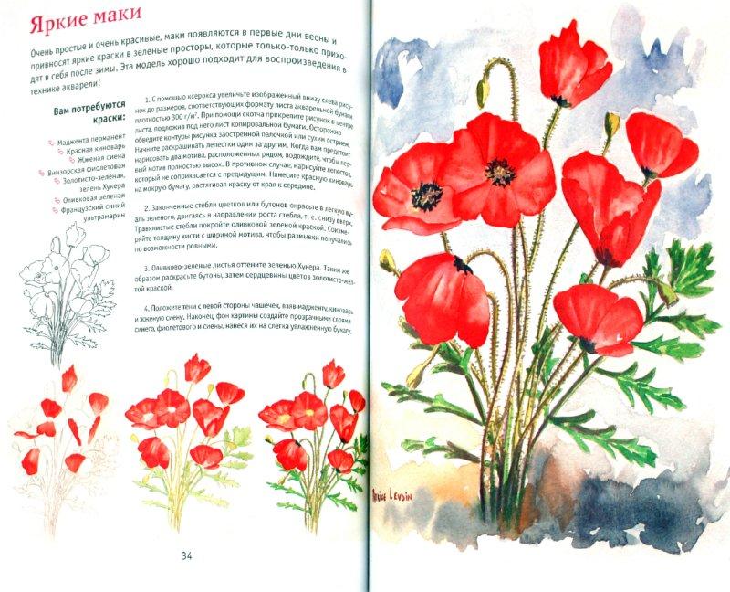 Иллюстрация 1 из 5 для Букеты цветов. Рисуем акварелью | Лабиринт - книги. Источник: Лабиринт