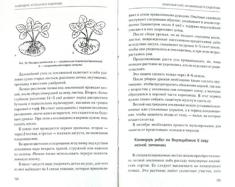 Иллюстрация 1 из 3 для Календарь успешного садовода - Надежда Зимина | Лабиринт - книги. Источник: Лабиринт