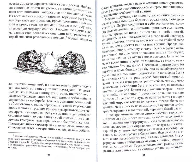 Иллюстрация 1 из 12 для Кольцо царя Соломона - Конрад Лоренц | Лабиринт - книги. Источник: Лабиринт