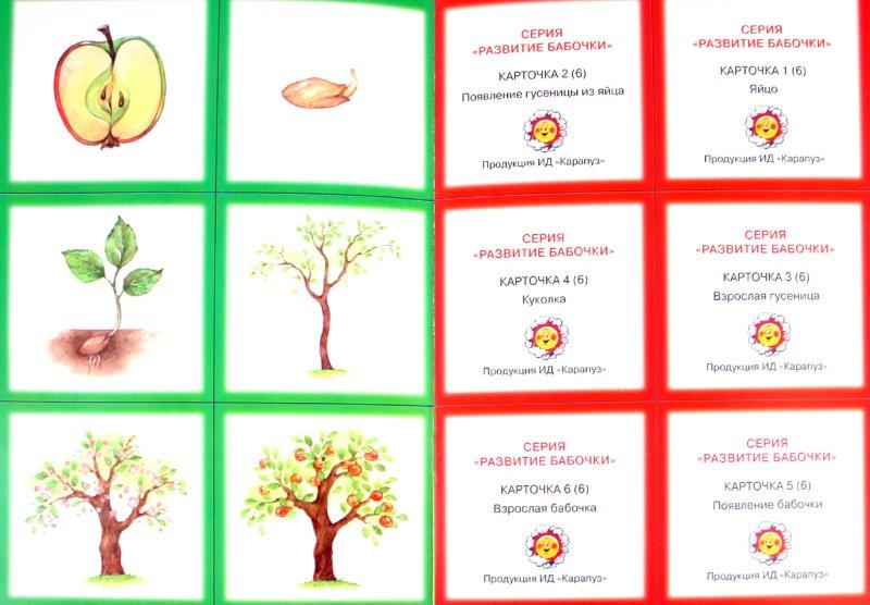 Иллюстрация 1 из 25 для Развитие. 2-5 лет   Лабиринт - книги. Источник: Лабиринт