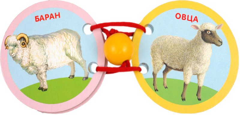 Иллюстрация 1 из 11 для Домашние животные | Лабиринт - книги. Источник: Лабиринт
