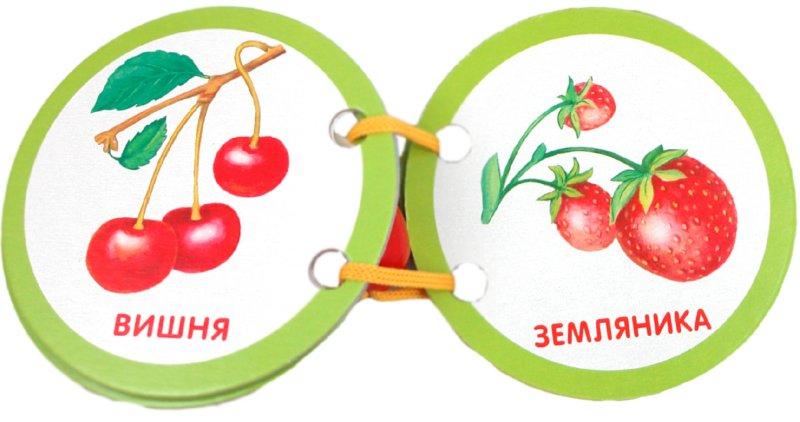 Иллюстрация 1 из 6 для Ягоды и фрукты   Лабиринт - книги. Источник: Лабиринт