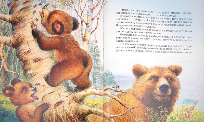 Иллюстрация 1 из 36 для Сказки о животных - Виталий Бианки | Лабиринт - книги. Источник: Лабиринт
