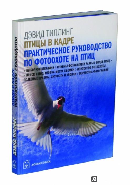 Иллюстрация 1 из 42 для Птицы в кадре. Практическое руководство по фотоохоте на птиц - Дэвид Типлинг | Лабиринт - книги. Источник: Лабиринт