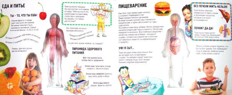 Иллюстрация 1 из 16 для Тело человека | Лабиринт - книги. Источник: Лабиринт