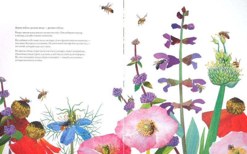 Иллюстрация 1 из 28 для Гнезда, норы и горшки. Как насекомые заботятся о потомстве - Анне Меллер | Лабиринт - книги. Источник: Лабиринт