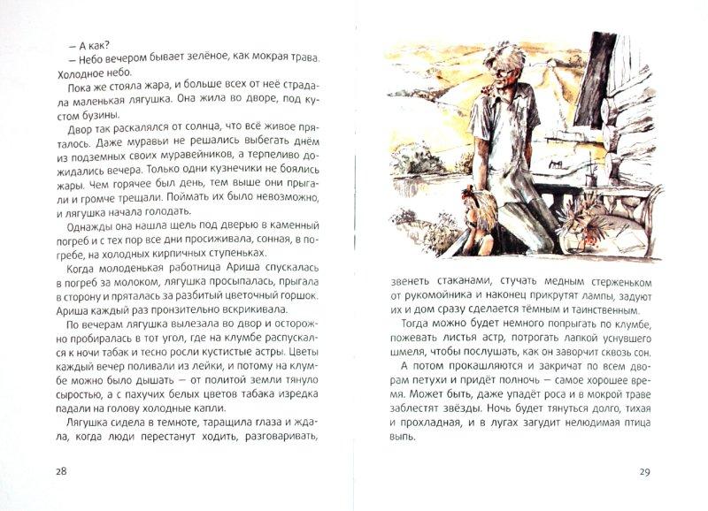 Иллюстрация 1 из 45 для Стальное колечко - Константин Паустовский   Лабиринт - книги. Источник: Лабиринт
