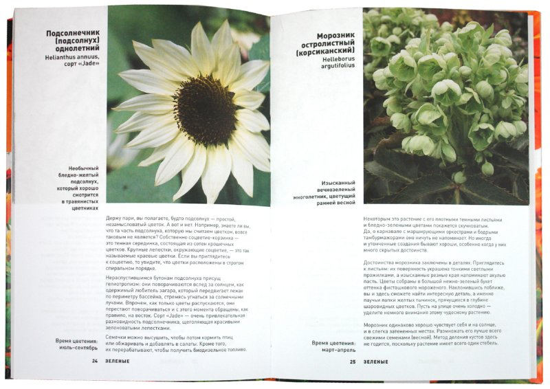 Иллюстрация 1 из 6 для Садовые цветы: от фиолетового до желтого - Джеймс Александер-Синклер | Лабиринт - книги. Источник: Лабиринт