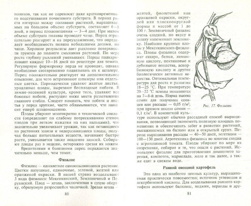 Иллюстрация 1 из 6 для Огород на подоконнике - Масленников, Мухина | Лабиринт - книги. Источник: Лабиринт
