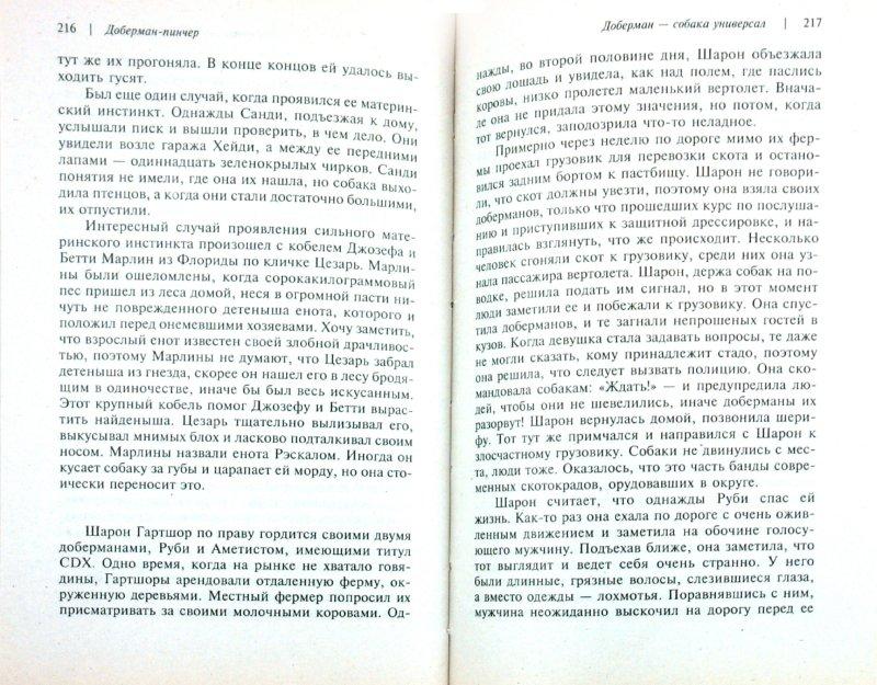 Иллюстрация 1 из 24 для Доберман-пинчер - Джоанна Уокер | Лабиринт - книги. Источник: Лабиринт