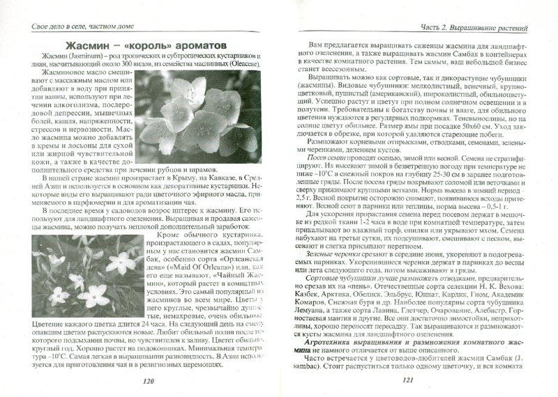 Иллюстрация 1 из 4 для Свое дело в селе, частном доме. 56 предложений | Лабиринт - книги. Источник: Лабиринт