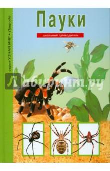 Пауки, клещи, скорпионы