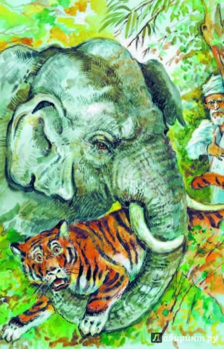 Иллюстрация 2 из 33 для Кенгура - Борис Житков | Лабиринт - книги. Источник: Лабиринт