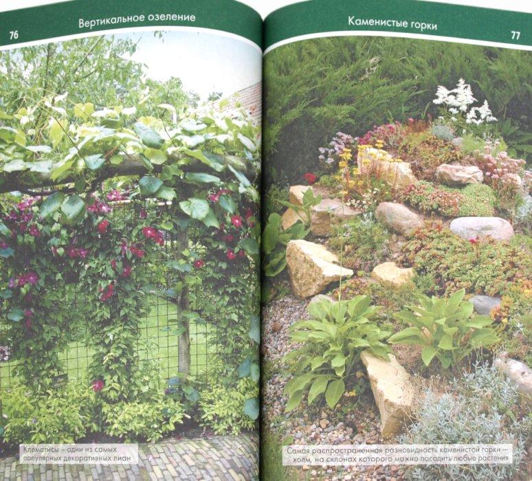 Иллюстрация 1 из 6 для Планировка и обустройство вашего сада - Елена Поплева | Лабиринт - книги. Источник: Лабиринт