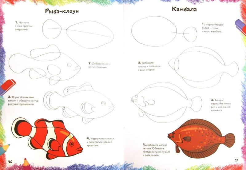 Иллюстрация 1 из 37 для Рисуем морских животных, рыб и птиц   Лабиринт - книги. Источник: Лабиринт