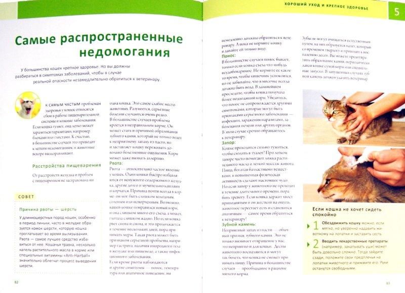 Иллюстрация 1 из 6 для Моя кошка - Хельга Хоффман   Лабиринт - книги. Источник: Лабиринт