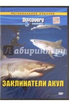 Zakazat.ru: Заклинатели акул. Региональная версия (DVD). Моффит Крэйг