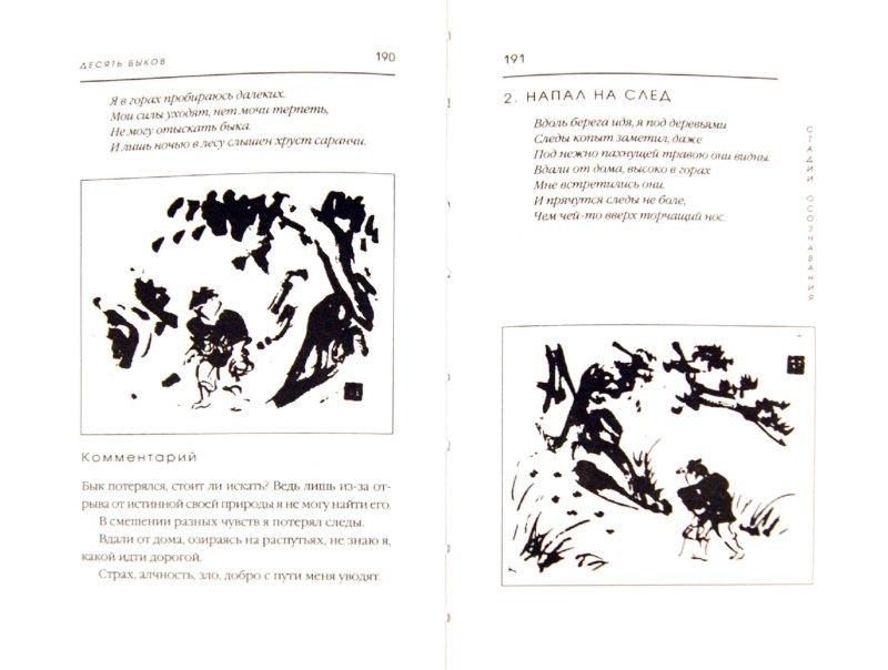 Иллюстрация 1 из 11 для Плоть и кости Дзэн   Лабиринт - книги. Источник: Лабиринт