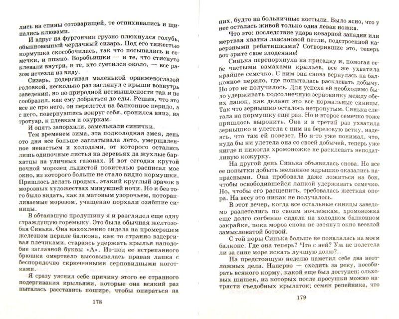 Иллюстрация 1 из 27 для Красное вино Победы - Евгений Носов | Лабиринт - книги. Источник: Лабиринт