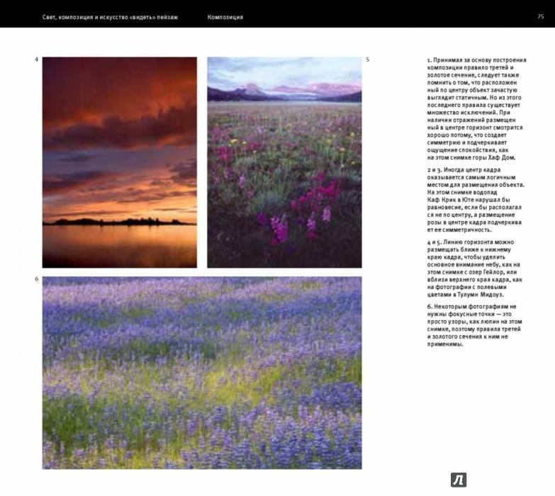 марк гейлер основы композиции и художественной фотосъемки pdf document
