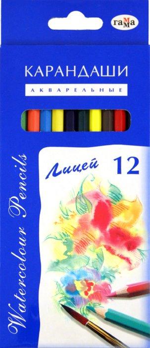 """Иллюстрация 1 из 4 для Карандаши 12 цветов, акварельные """"Лицей"""" (261019)   Лабиринт - канцтовы. Источник: Лабиринт"""