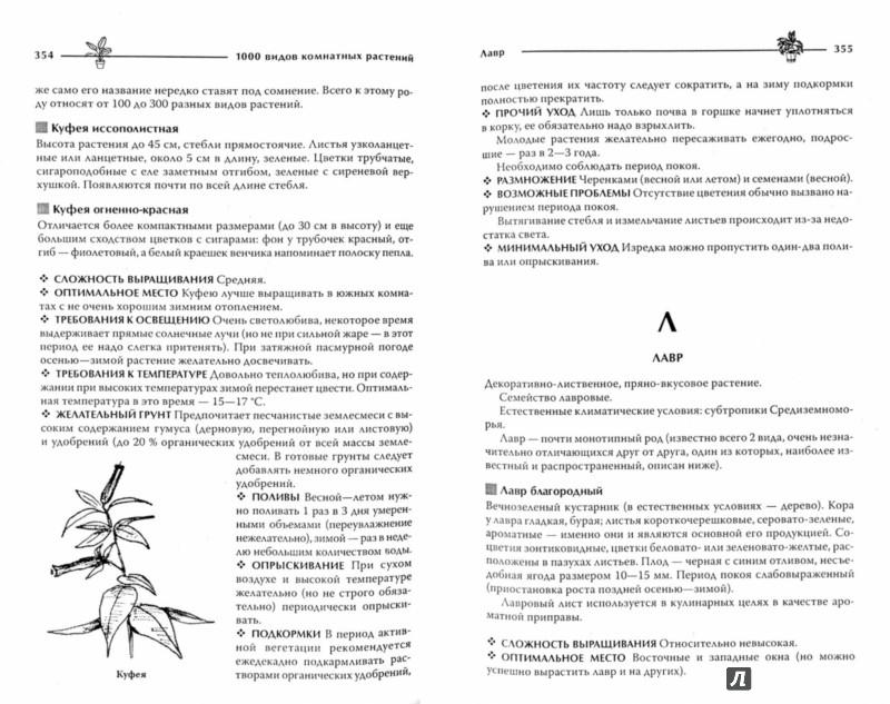 Иллюстрация 1 из 11 для 1000 видов комнатных растений. Цветоводство от А до Я - Мария Цветкова | Лабиринт - книги. Источник: Лабиринт