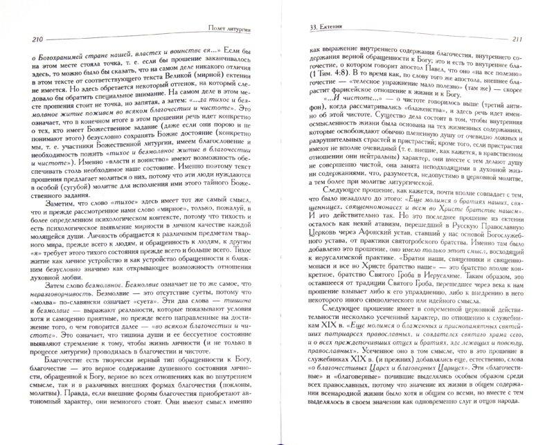 Иллюстрация 1 из 10 для Полет литургии. Созерцания и переживания - Владислав Протоиерей | Лабиринт - книги. Источник: Лабиринт