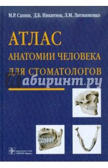Атлас анатомии человека для стоматологов анна спектор большой иллюстрированный атлас анатомии человека