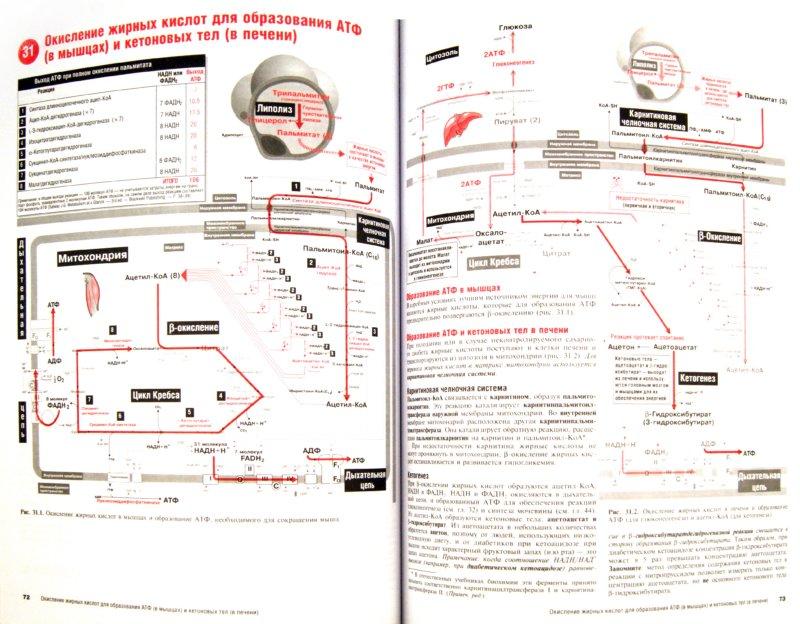 Иллюстрация 1 из 7 для Наглядная медицинская биохимия - Дж. Солвей | Лабиринт - книги. Источник: Лабиринт