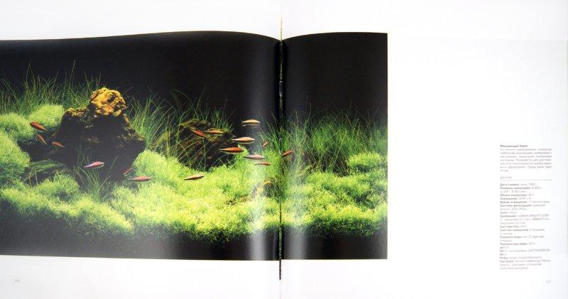 Иллюстрация 1 из 20 для Мир природного аквариума - Такаши Амано | Лабиринт - книги. Источник: Лабиринт