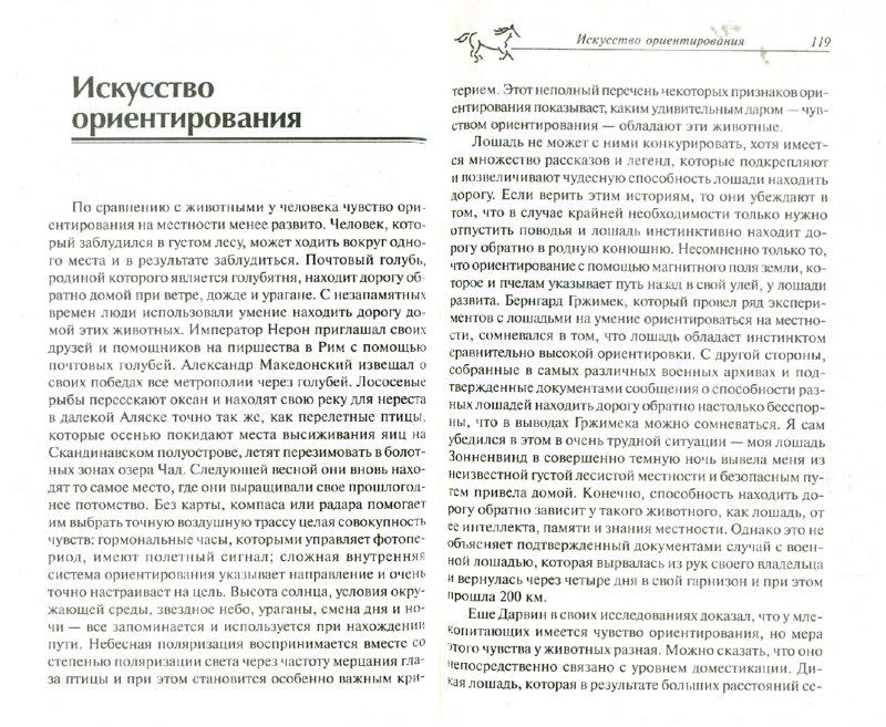 Иллюстрация 1 из 5 для Психология лошади. Нрав, чувства, поведение - Герхарт Герверк | Лабиринт - книги. Источник: Лабиринт