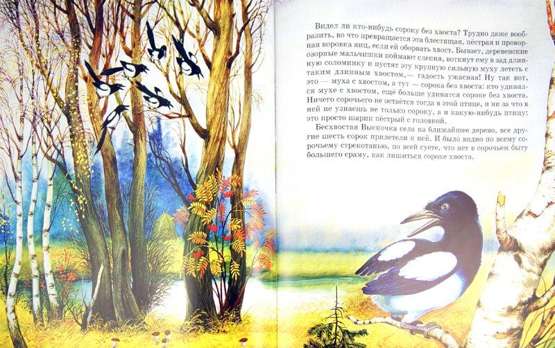 Иллюстрация 1 из 30 для Кладовая солнца - Михаил Пришвин   Лабиринт - книги. Источник: Лабиринт