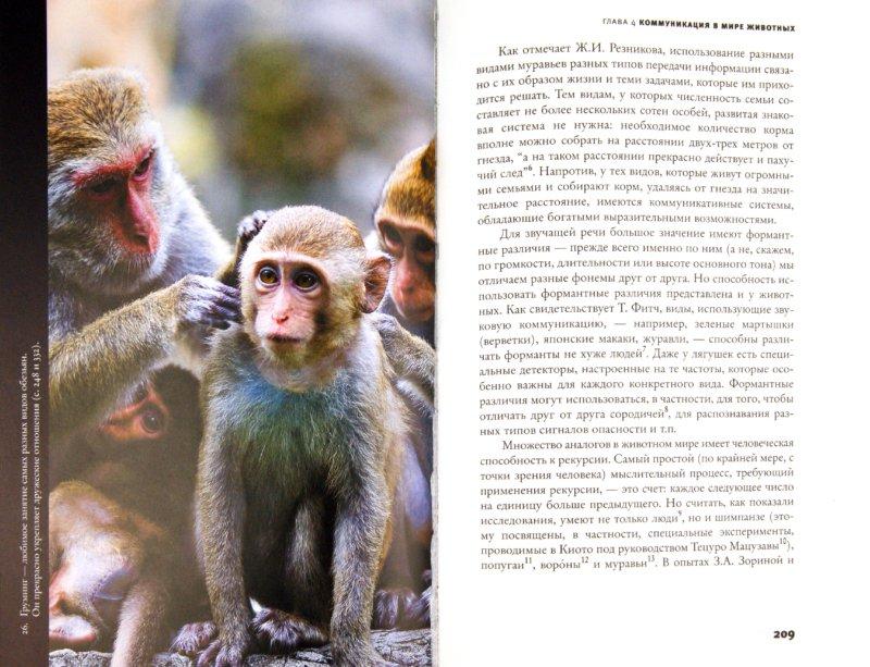 Иллюстрация 1 из 17 для Происхождение языка. Факты, исследования, гипотезы - Светлана Бурлак   Лабиринт - книги. Источник: Лабиринт